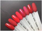 Gellak | Catch the kiss collection + Infinity pigment gratis_
